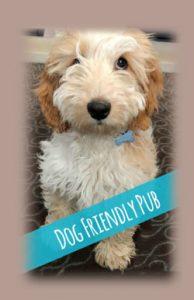 The Greyhound is a dog friendly pub